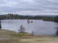Z výletu do rekreační oblasti nad Trondheimem. Příšerná kvalita - foceno mobilem.