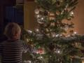 Ale ještě nadšenější byl z rožnutého vánočního stromečku.