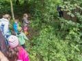 A máme tady lyšáka. Potkat ho někde v lese, tak volám 158 :)