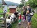 Další den jsme jeli k sousedům do Polska na farmu.