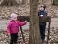 """""""Kácení"""" stromů v pomoraví."""